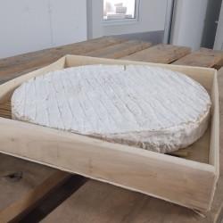 Brie de Meaux, à la coupe